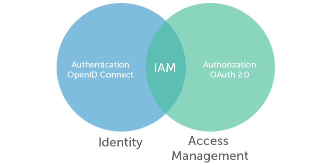 OpenID Connect combined with Oauth 2.0 form a complete Identity and Access Management strategy.